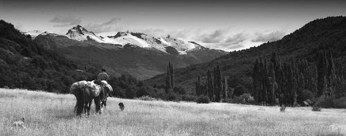 Patagonia Valley